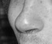 Odour survey tool