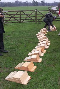 Bat boxes laid out ready for installation.