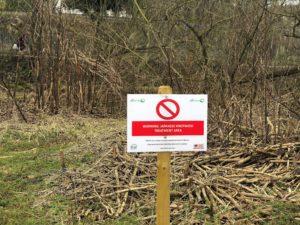 Warning Japanese Knotweed Treatment Area
