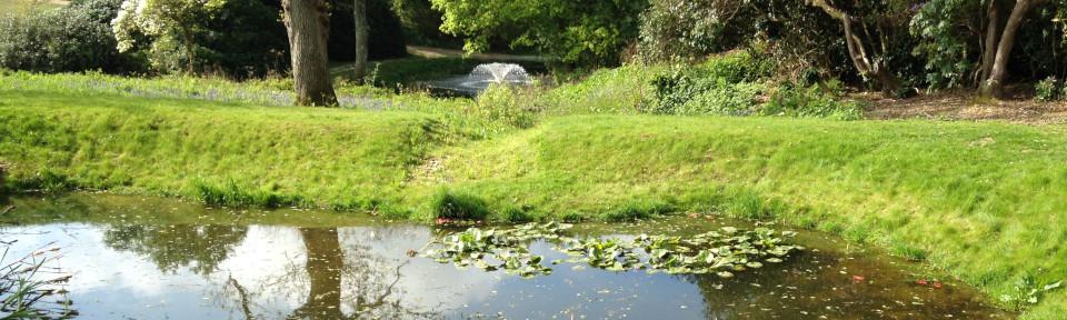 Hero pond creation